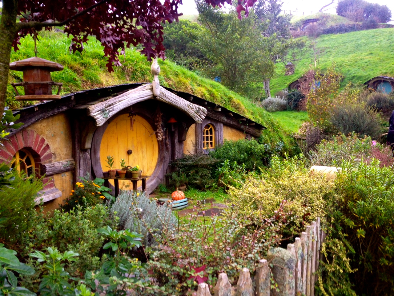 A short post about Hobbits