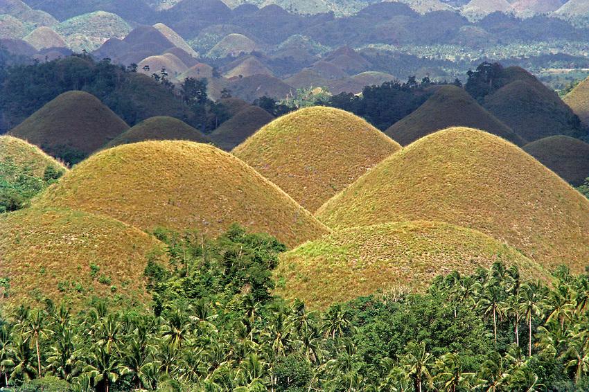 Untangling Bohol