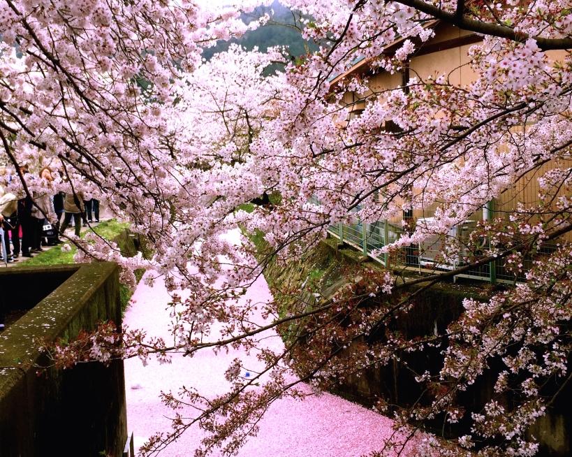 Japan01_by_tanya_lara