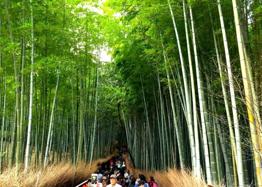 Japan14_by_tanya_lara