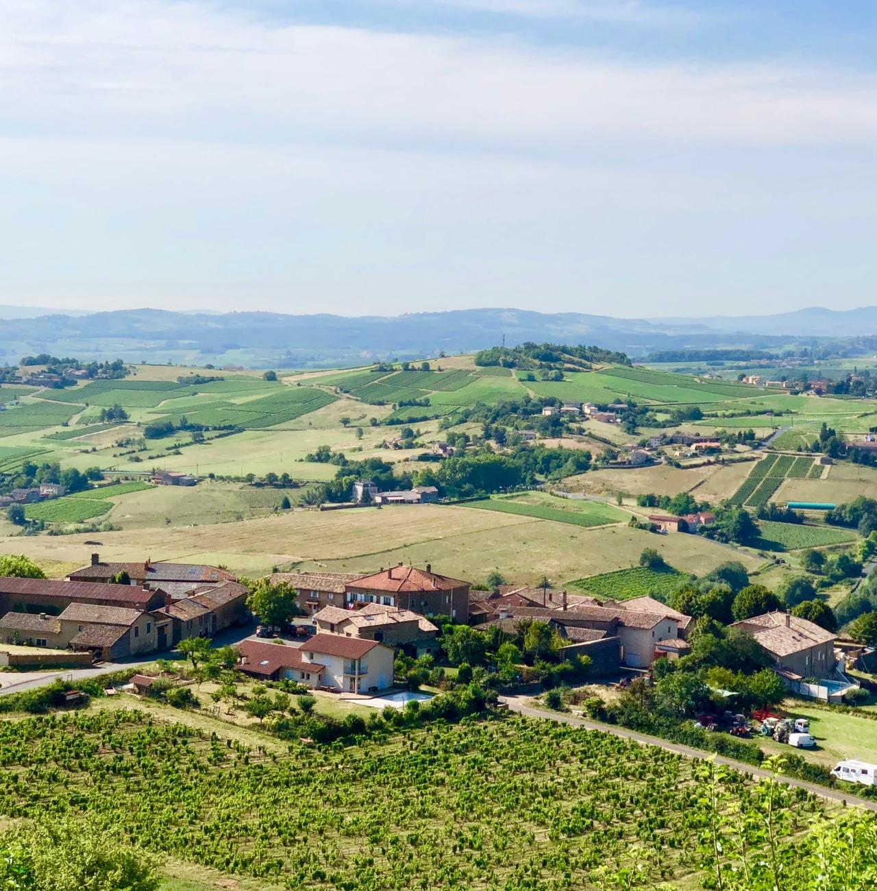 Burgundy02_by_Tanya_Lara